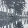 鮎つり風景-南川堤防(昭和初期)